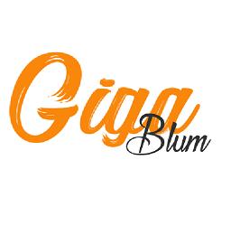 Gigablum : le journal du lycée